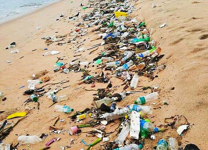Стало прохладнее, экологическое бедствие: куда девать мусор и трупы?